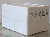 辽宁水产品保温箱